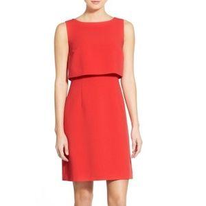 Halogen Popover A-Line Dress Red Bloom